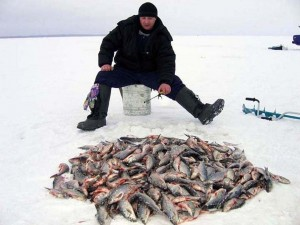 Зимняя рыбалка. Фото