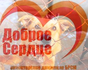 imgonline-com-ua-PicOnPic-UuVRxOX5QR